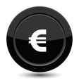Glossy black euro button vector image