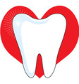 love my tooth vector image