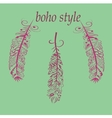 Feathers in boho vector image