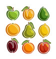 set colorful fruits icons vector image