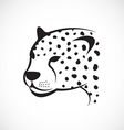 image of an cheetah face on white background vector image