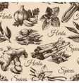 Seamless pattern of kitchen herbs and spices vector image