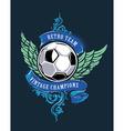 Soccer Grunge Print vector image