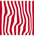 Striped abstract background red and white zebra vector image