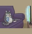 cat watching tv vector image