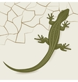 The background of the desert lizard vector image