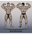 Bodybuilder Position the front and rear vector image vector image