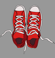 comfortable sports gumshoes vector image