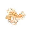 Tropical Fish Lionfish Pterois Volitans vector image