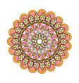 floral mandala color decoration bohemian vintage vector image
