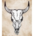 Hand drawn romantic style cow or bull skull vector image