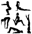 Girls are making exercises vector image vector image