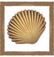 seashell brown vector image