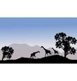 Giraffe in hills scenery vector image