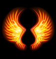 fire wings vector image vector image