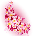 Greeting card or invitation with floral background vector image
