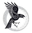 the raven of odin in a celtic style and design vector image