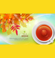 mug of black tea against the background of autumn vector image