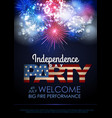 independence day party poster with holiday vector image