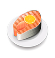 Grilled salmon isolated on white vector image vector image