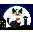 Cat on roof in the night vector image