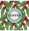 Coffee tree  Coffee design template vector image vector image