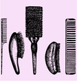 different combs vector image