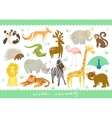 Big Set of Zoo cute animals vector image
