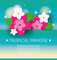 tropical banner with exotic orchid flowers vector image