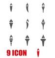 grey torch icon set vector image vector image