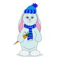 Rabbit girl with a carrot vector image