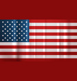 usa flag national symbol united states of america vector image