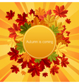 autumn is coming vector image