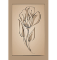 flower on a beige background Imitation ink vector image vector image