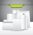 Packaging Template vector image vector image