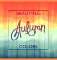 beautiful autumn colors vector image
