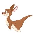 Cartoon Kangaroo B vector image