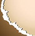 Damaged paper vector image