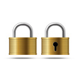 Gold locks vector image
