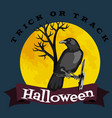black raven in moonlight perched on tree scary vector image