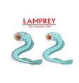 lamprey parasite fish in cartoon design vector image