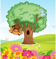 a monkey a bird and a tree vector image vector image