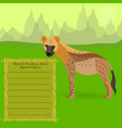 african spotted hyena vector image
