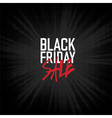 Black Friday sales Advertising Poster vector image