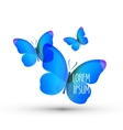 butterfly logo design template insect or nature vector image
