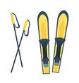 skiing winter seaso equipment vector image