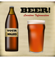 Beer bottle and foaming glass vector image vector image