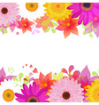 Flower Background With Gerber And Leafs vector image vector image