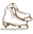 engraving winter skates vector image