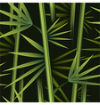 Seamless bamboo pattern vector image